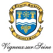 vigneux-sur-seine.png