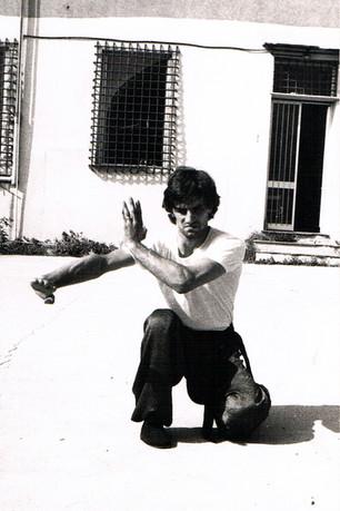 1981 PARATA