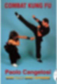 buy-dvd-combat-kung-fu-free-style.jpg