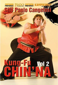download-dvd-kung-fu-chin-na-vol-2.jpg