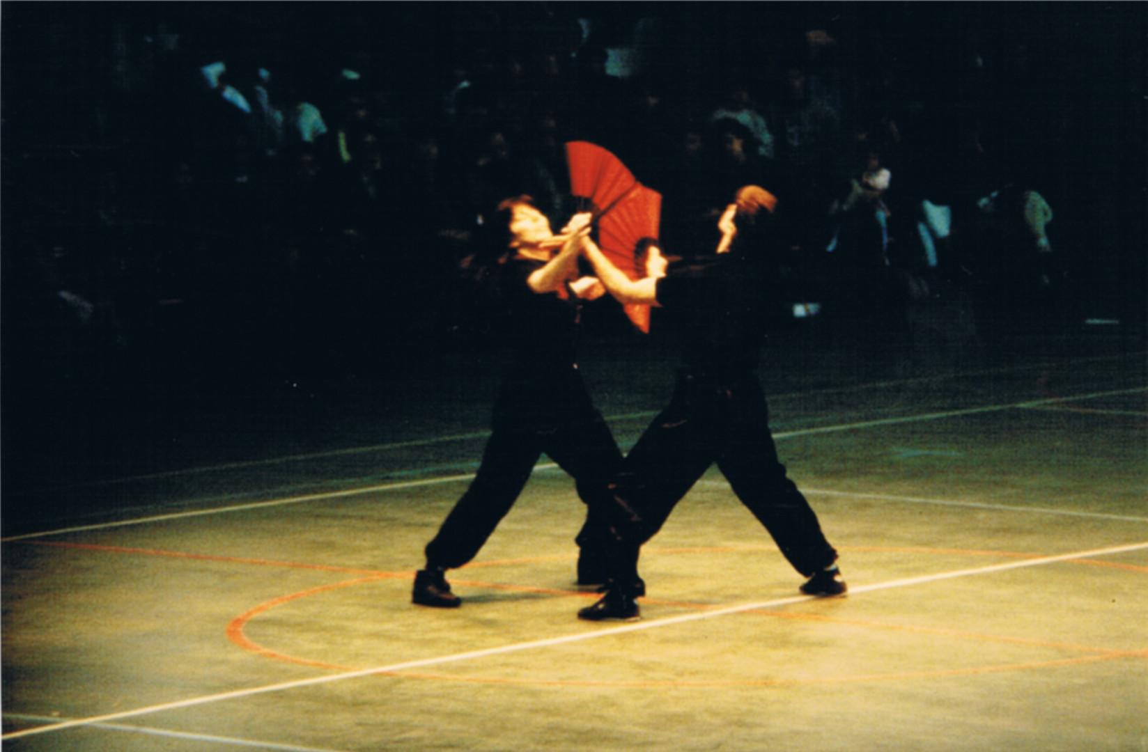 1988 PARIGI VENTAGLI