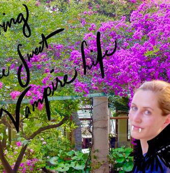 Vivendo La Dolce Vampiro Vita (Living The Sweet Vampire Life) in Sicily!
