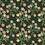 Thumbnail: Myosotis
