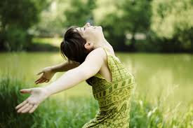 Breath of Fresh Air An Organic Respiratory Synergy Blend 10mL