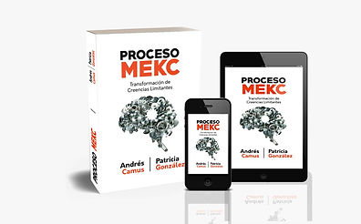 MAQUETA3 PROCESO MEKC.jpeg