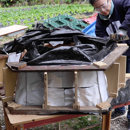 Build a doghouse with earth_Part2: The Design and Fabrication of Fabric Formwork