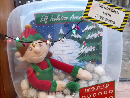 Hollie the School Elf Arrives