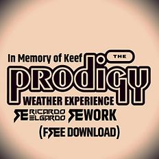 Ricardo Elgardo Prodigy ReWork
