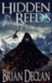 Hidden in the Reed's - Cover Image