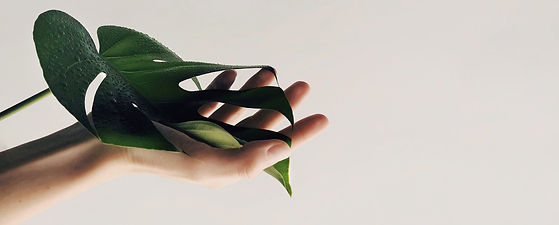naturopathe-lyon.jpg