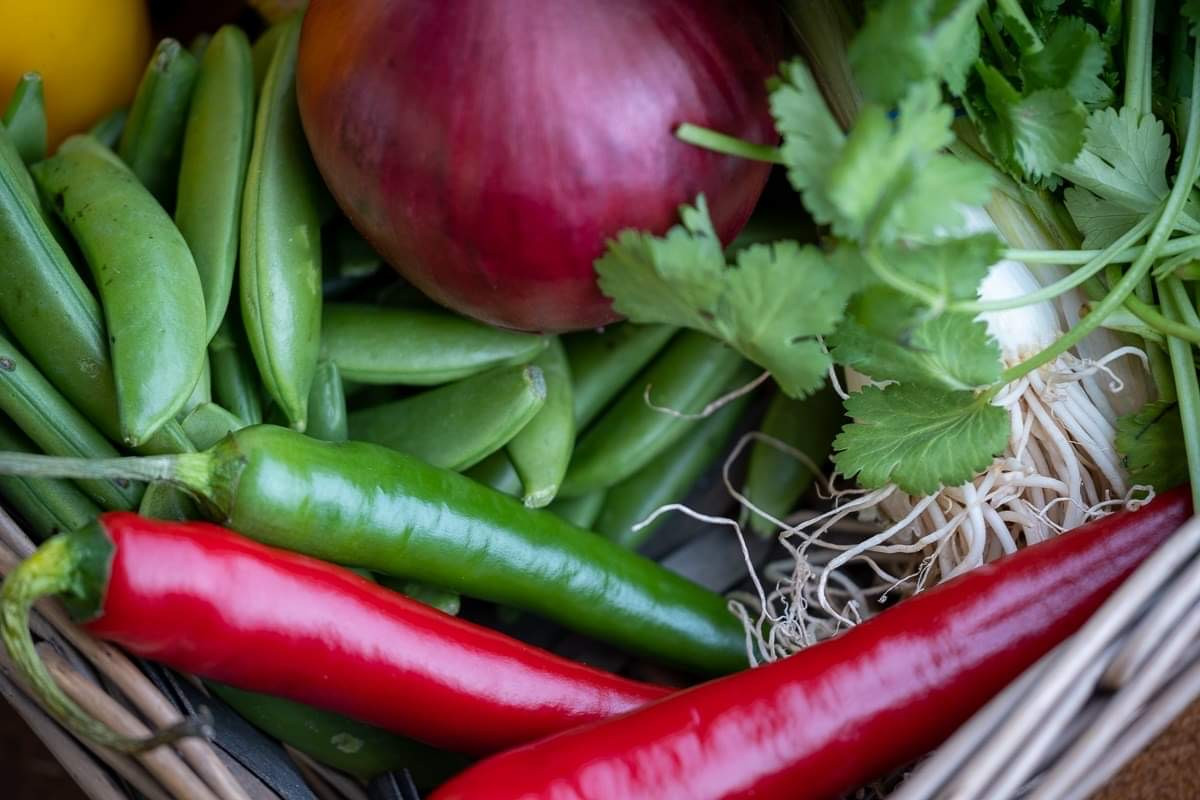 Fresh veg, herbs and spices
