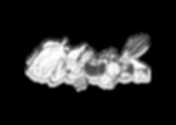 wix素材-01.png