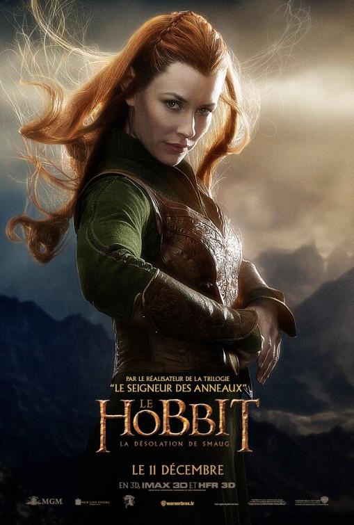 hobbit_the_desolation_of_smaug_ver19.jpg