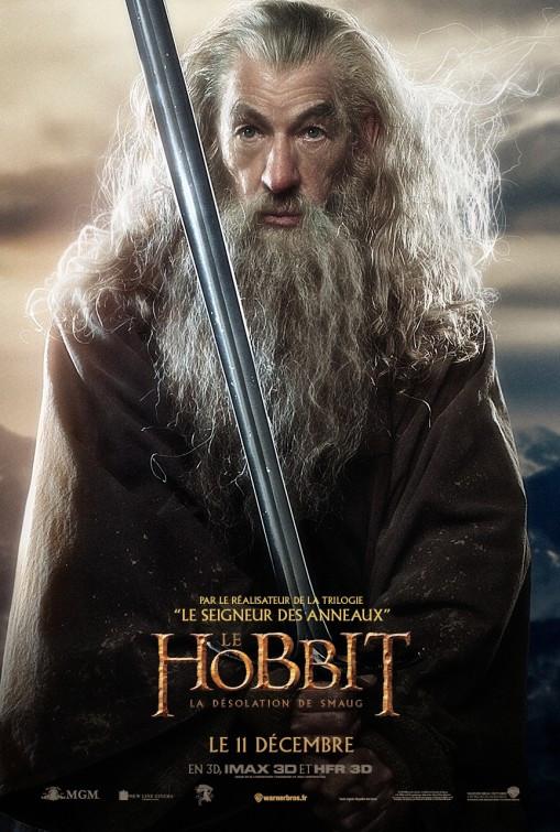 hobbit_the_desolation_of_smaug_ver17.jpg