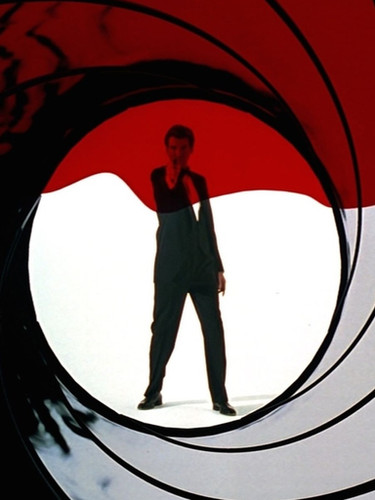 goldeneye_-_gun_barrel.0_edited.jpg