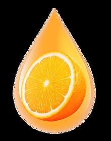 orange-oil-termite-control.png