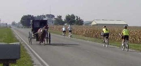 bikebuggy-1.jpg