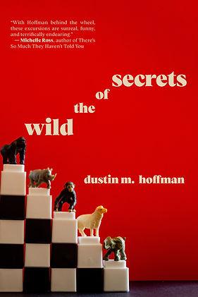 Secretsebookcover.jpg