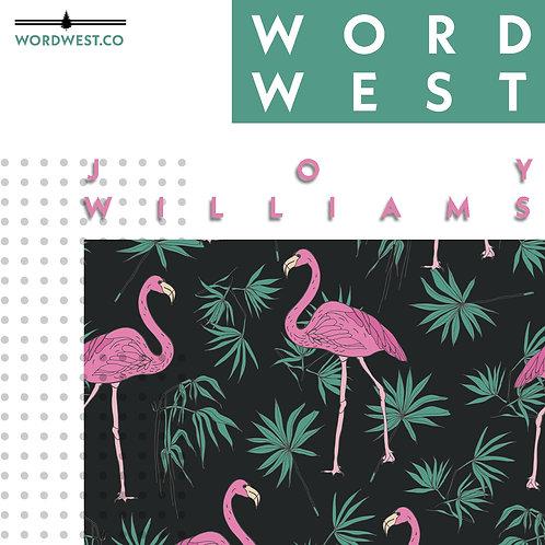 joy williams workshop (taught by vincent scarpa)