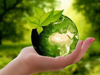 Beloved Mother Nature