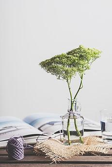 Plante en bouteille en verre