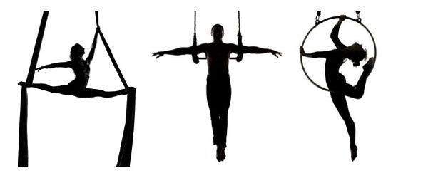 trapeze-silhouette-18.jpg