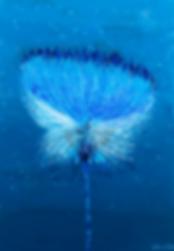 BlueFlowerWeb.PNG