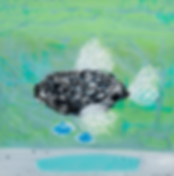 CoralFishWeb.PNG