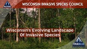 Wisconsin's Evolving Landscape Of Invasive Species Is Here