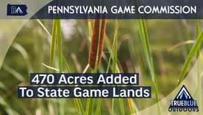 More Than 470 Acres Added To Pennsylvania State Game Lands