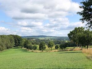 Landschaft Sommer 1.jpg