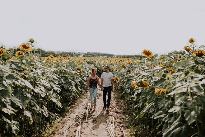 sunflowers 2 .jpg