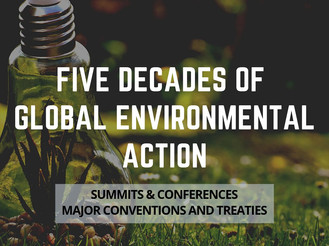 Five Decades of Global Environmental Action