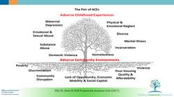 Adverse Childhood Experiences Explained