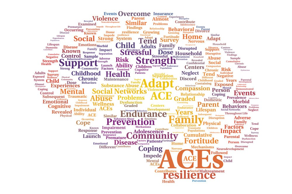 Adverse Childhood Experiences Study Summary