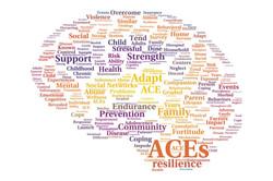 Adverse Childhood Experiences Study Summary