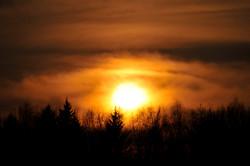 Глосарий,собака, облака 015