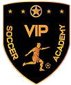 VIP LOGO TO USE.png