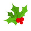 holly-leaf-free-berry-vector-clipart-psd