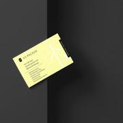 Business Card Mockup copylowres.jpg