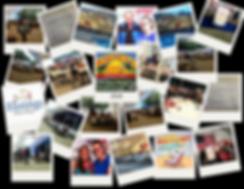 Photo Grid for Website - MLE - Bayleys (