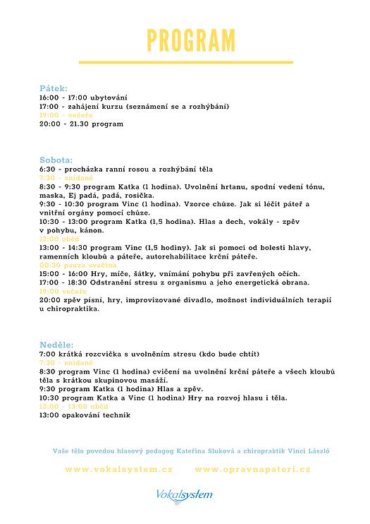Program.png