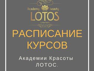 Расписание курсов Академии Лотос