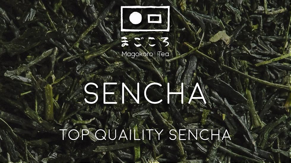 Sencha First Flush (Shincha) - Exceptional grade Sencha