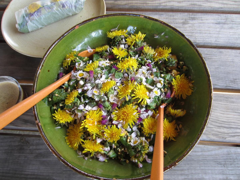 Salade de pissenlit, cardamine, pâquerettes et son rouleau au fleurs de printemps