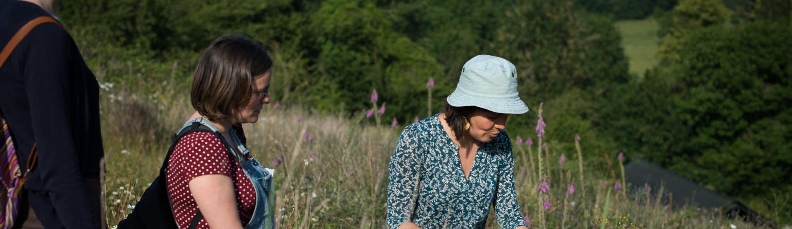 Découverte des Plantes Sauvages comestiblesAAEBD19©_Naïade_Plante-53
