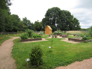 Jardin des Herbes sauvages