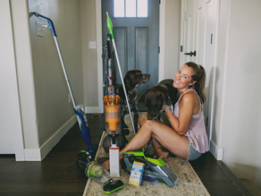 How to have dogs AND a clean home