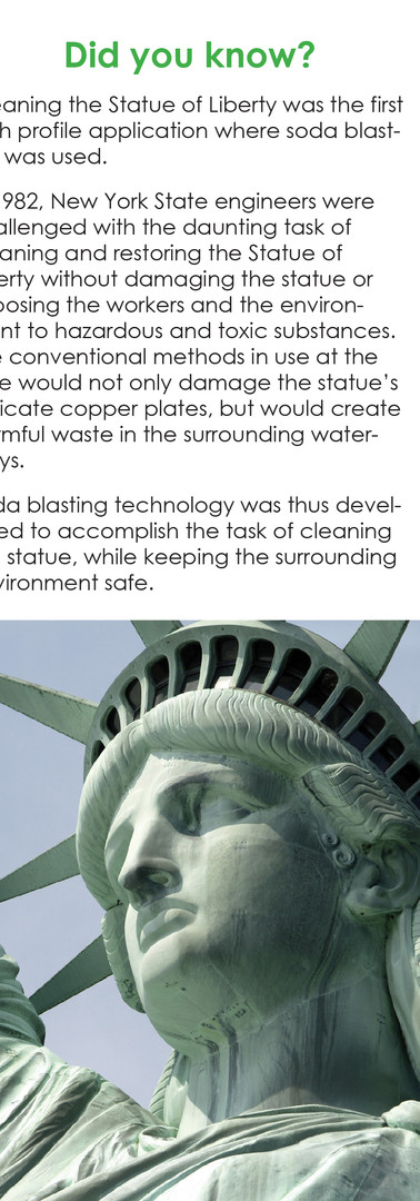 Green Clean Brochure