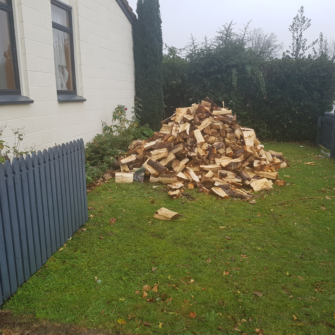 Firewood without a Storage Shed
